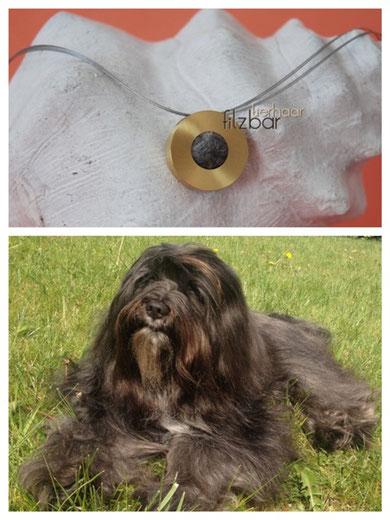 Filzschmuck Hundefell