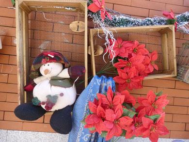 Snowman, flores de pascua