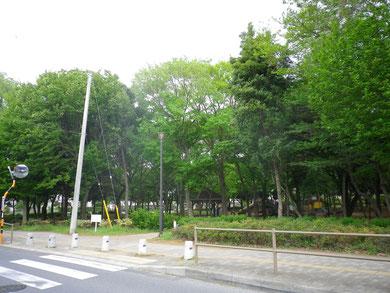 弊社オフィス前の公園(長沼町公園)