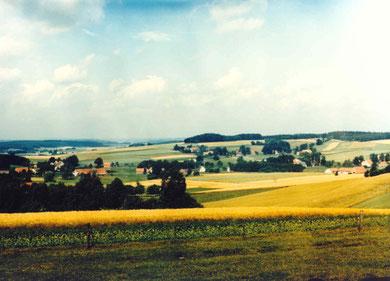 Oberholsten Panorama