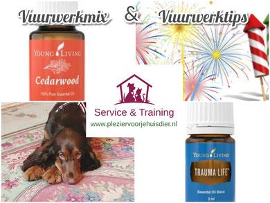 plezier voor je huisdier, vuurwerk honden, young living, vuurwerkangst, vuurwerktips, honden