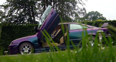 Calibra - Green to Purple
