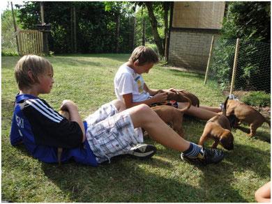 Wie toll, Besucherkinder zum spielen und kuscheln