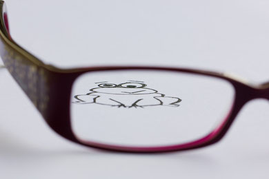 Conny - Foto 3 - Der Frosch hinterm Glas!