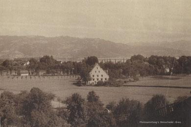 Photosammlung S. Weisschedel-Brass
