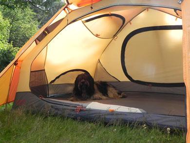 Oskar macht Campingurlaub!