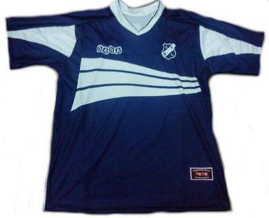 Camiseta Titular 2010/11 (sin publicidad)