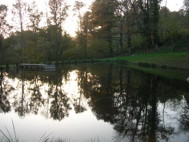 Un étang de pêche de 1000 m² vous est également proposé !