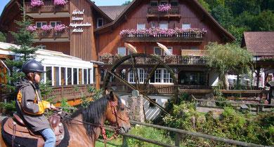 Im Schwarzwald unterwegs