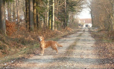 Eazie sur ses terres (février 2012)