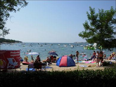 Novigrad, Zeltplatz direkt am Meer