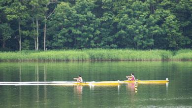 大会本部前を力漕する1レーン藤崎選手