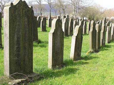 Auf dem jüdischen Friedhof in Mansbach
