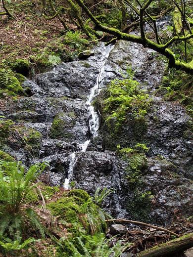 角原コースにある二つの滝の一つです。