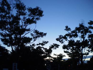 夕暮れ時。ようやく暑さが和らいできました