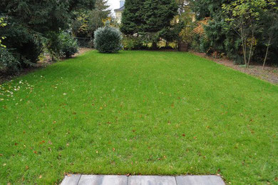 Substrate 0-5 blowable for lawn greening