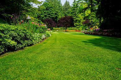 Substrate 0-8 for lawn greening