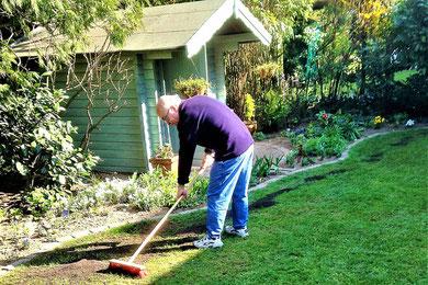 Renovation of Lawn