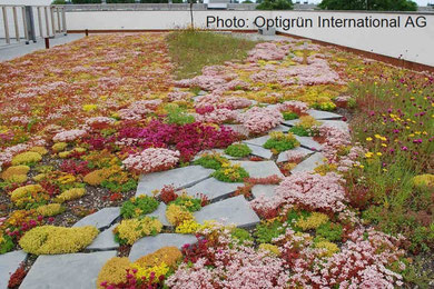 extensive substrate for green roofs