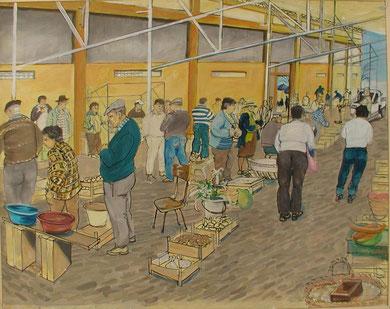Bauernmarkt in Lagos, Bild von Aidan Bremner
