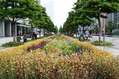 Minato Mirai area, Yokohama, on June 9, 2013