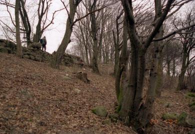 юго-западная сторона руин замка фото 2001 г.