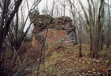 1998 г. остатки руин замка.