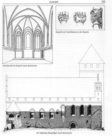 Реконструкция Штайнбрехта