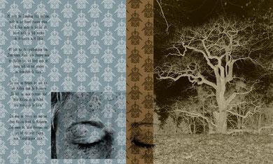 """Rosmarin, Illustration zu einer Ballade, aus: """"von rosen und krentzelein"""", fotografische Collage, 2010"""