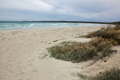 Vivonne Beach