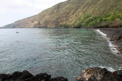 Kaelakekua Bay
