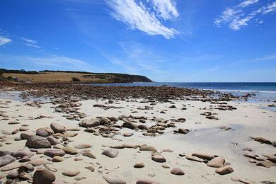 Stoakes Bay