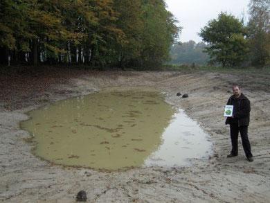 """Eines von zweien im September 2009 speziell für den Kammmolch am Rand des """"Fledermauswaldes"""" angelegten Kleingewässern (Projekt """"Gewässer für den Kleinen Wasserdrachen"""")."""