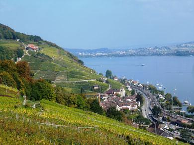 Weinkultur, hübsche Dörflein, Drei Seen Land