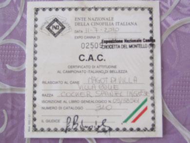 C.A.C. Nazionale Crocetta del Montello (Tv)