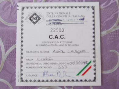 C.A.C Nazionale di Treviso