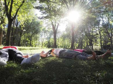 Meditacion al aire libre