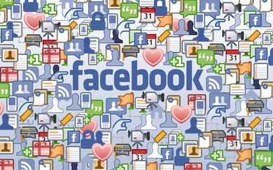 Hier geht es zum Facebook-Profil!