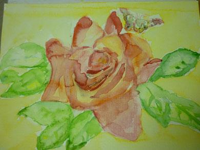 Rose mit Schmetterling Mai 2012