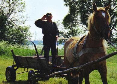 Pferdefuhrwerk - Kindheitserinnerungen