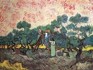 Van Gogh. Los recogedores de aceituna en Saint Remy (1889)