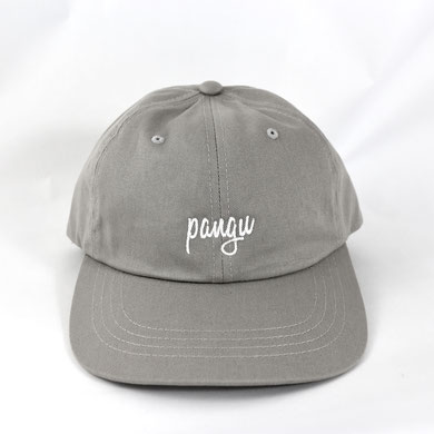 Salute Pinguin Dad Cap - grau/grey