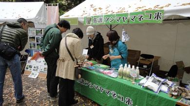 ヤマネコ米の販売