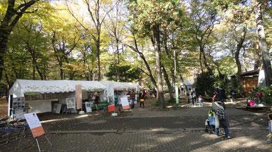 ヤマネコテント広場全景