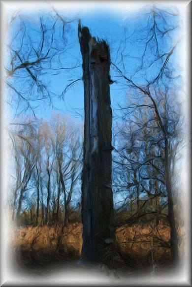 Mein Freund der Baum ist tot