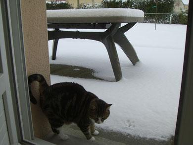 Il neige à Mayenne