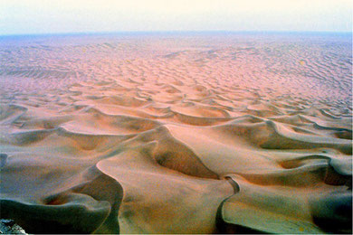 Huge sand dunes of central part of Taklimakan Desert view from top of the Mazartag. Photo by T. Ishiyama.