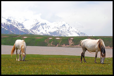 voyage à vélo en kirghizistan, laetitia, entreicietla, bike touring