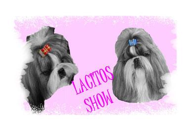 LACITOS SHOW