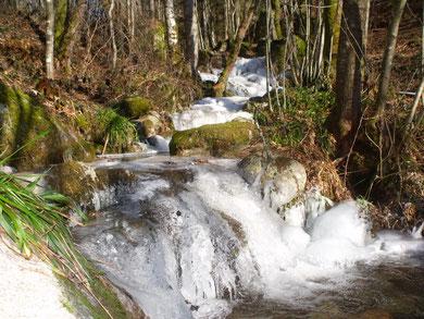 la cascade du Domaine  du Châtel Ferdrupt Vosgeset